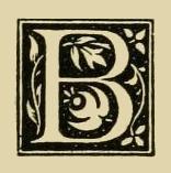 b-finch