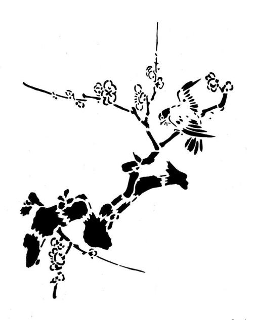 birds-34