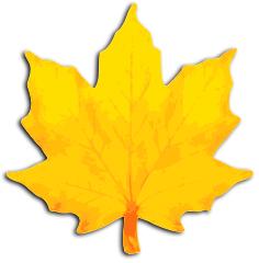 maple_leaf_fall_yellow
